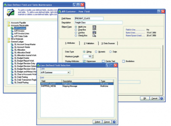 Sage 100 ERP user defined fields setup