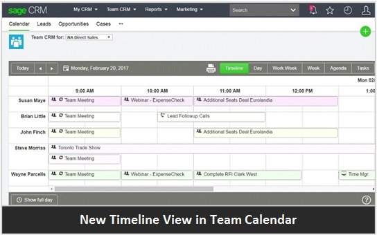 Sage CRM Timeline View in Team Calendar